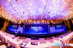 2019 PULSE国际健康医疗大数据产业大会(在杭州)圆满